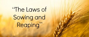 the law of sowing and reaping