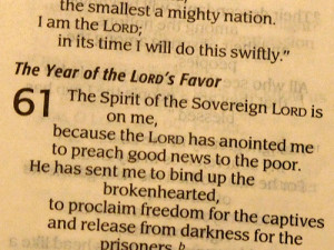 Year of the Lord's Favour
