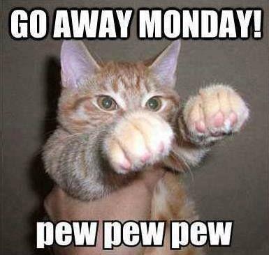 Monday morning feeling