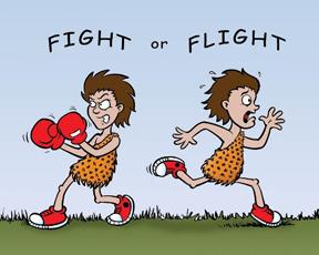 FightOrFlight (1)